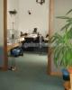 Inchiriere birouri in vila Kiseleff